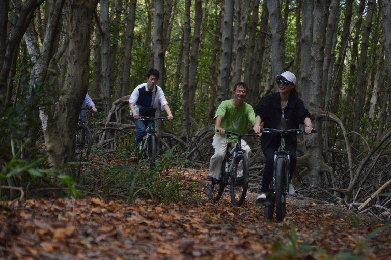 Đạp xe xuyên rừng