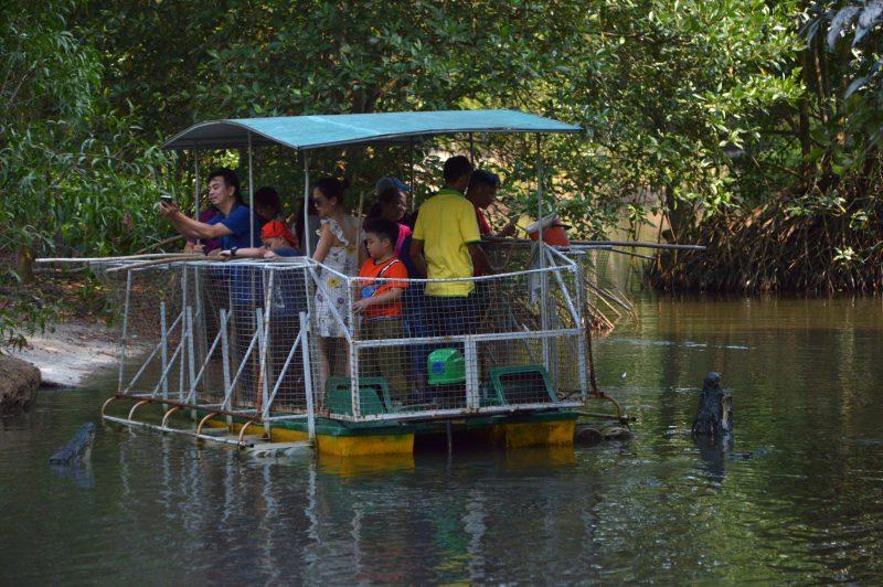 Người Sài Gòn cuối tuần rong chơi trong đầm cá sấu, tràm chim ở rừng Vàm Sát
